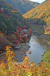 arashiyama_autumn_leaves_2015_003