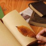 読書の秋の由来。意味はあるの?秋の夜長におすすめ2018度版