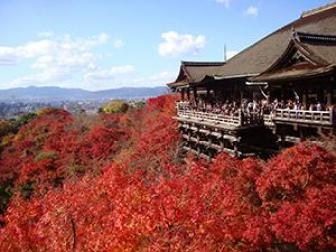 清水寺の紅葉ライトアップの期間と時間について調べました!