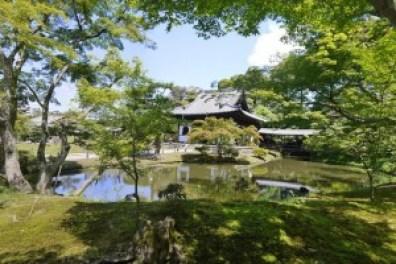 高台寺の紅葉でライトアップの見頃と混雑状況についてお知らせします。