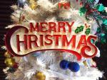 クリスマスの意味とは?子どもにツリーやケーキの由来を簡単に伝える