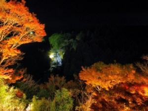 autumn_leaves_yourroukeikoku_2015_004