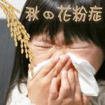 秋の花粉症の症状とは?原因と時期はいつまで?喉の痛みや咳の対策