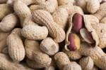 ピーナッツの栄養と効能。食べ過ぎの影響は?一日の適量は何粒?