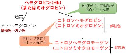 発色剤 ヘモグロビン  ニトロソヘモグロビン 亜硝酸