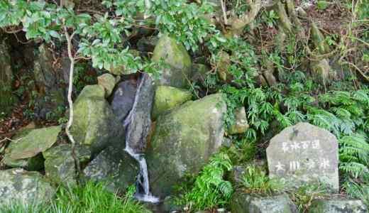 【屋久島の名水スポット】ご紹介!観光やトレッキングで美味しい水を飲むには