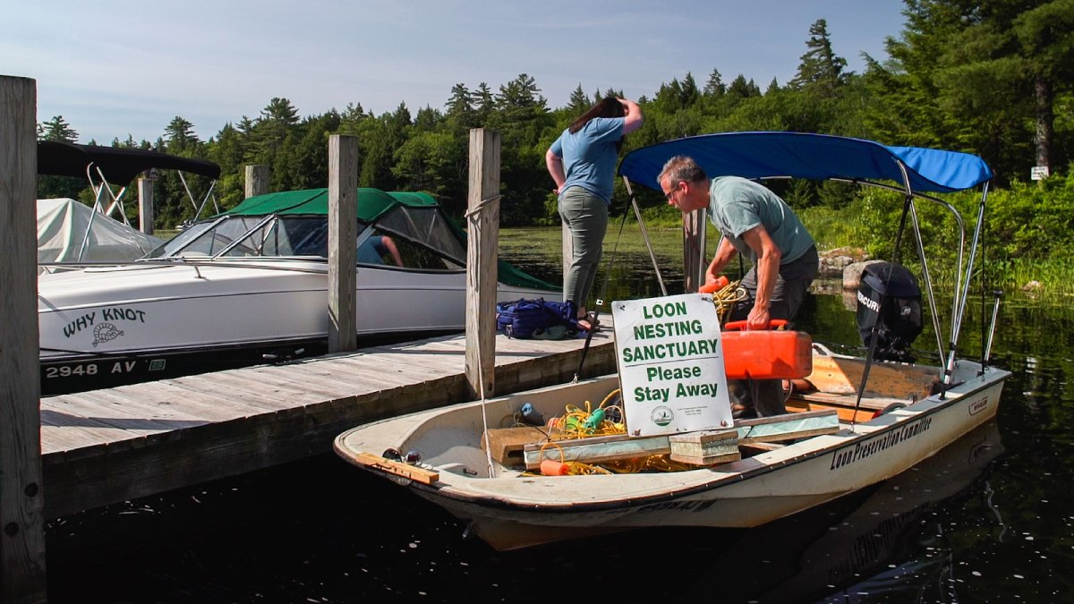 A boat with a sign that says Loon Sanctuary