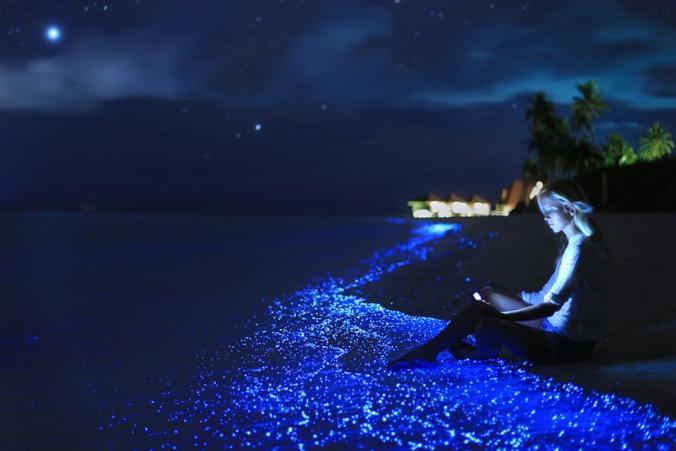 Resultado de imagem para Vaadhoo island