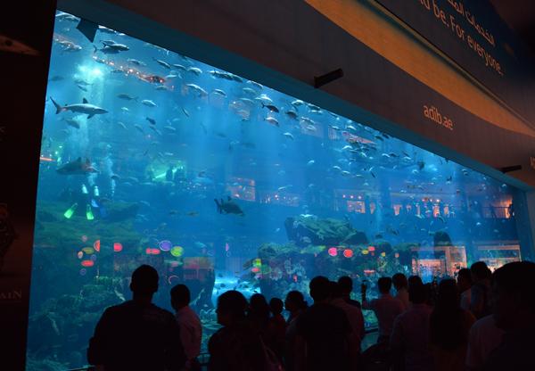 dubai_mall_aqarium2 | The Ya'lla Blog