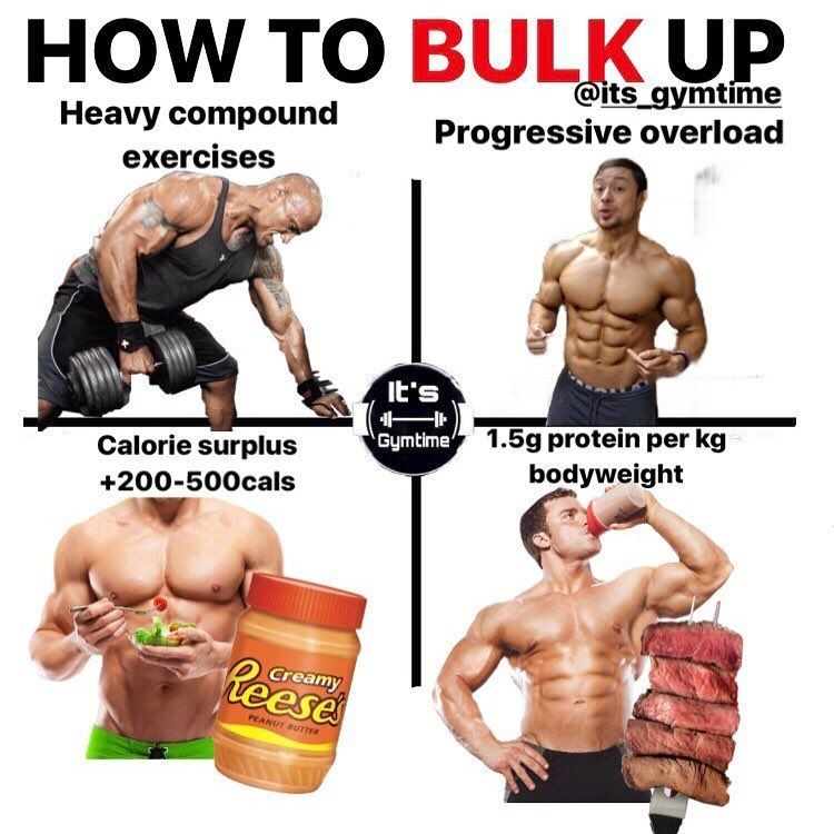 Gain muscle quickly how to bulk up fast bulking stack