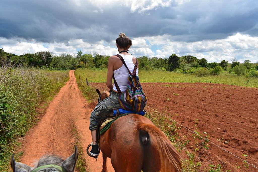 Horseriding Excursion 1