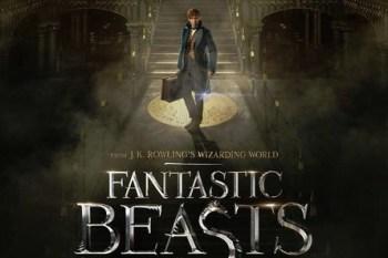 【電影】怪獸與牠們的產地//哈利波特前傳,跟著艾迪瑞德曼進入魔法世界看奇獸!