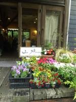 ランチ🍴ごぼうハンバーグ お花販売中🌺