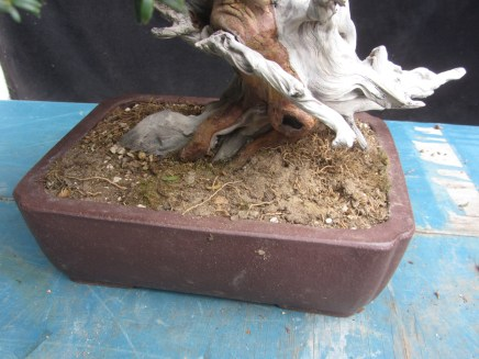 Original soil