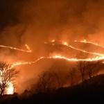 秋吉台の山焼き
