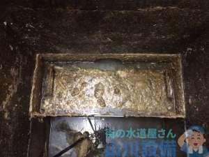 兵庫県尼崎市東園田町  排水管つまり修理  グリストラップ清掃