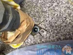 奈良県奈良市中町  水道管水漏れ修理  水道管折れた