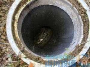 高圧洗浄機を使った排水管清掃の施工事例(動画あり)