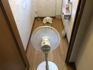 東大阪市森河内西で便器と床の間の水漏れは山川設備にお任せ下さい。