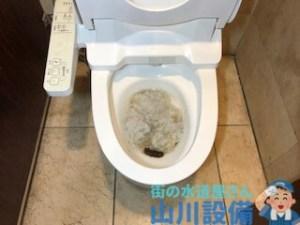 堺市南区栂でアラウーノを詰まらせたら山川設備にお任せ下さい。