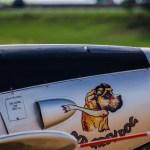日本からアメリカまで!国際線で犬を機内持ち込みできる航空会社が知りたい!