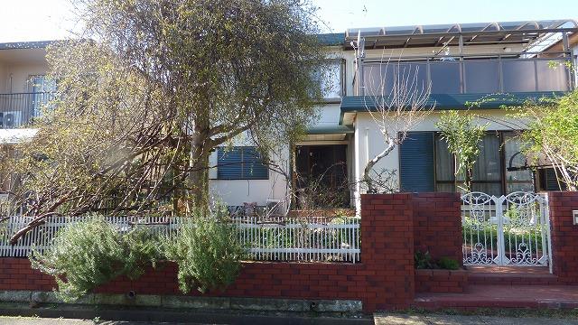 160322 我が家の庭 やっと春になった (40)