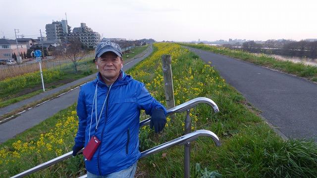 160308Tue 菜の花 江戸川 我が家の散歩道 (30)
