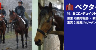 競走馬登録・ベクターイメージ