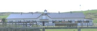 往年のヤマニンベン牧場