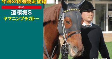 特別競走登録・ヤマニンプチガトー