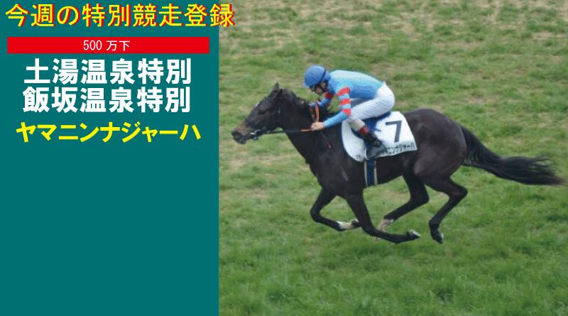 特別競走登録・ヤマニンナジャーハ