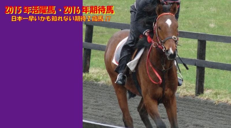 2015年活躍馬・2016年期待馬