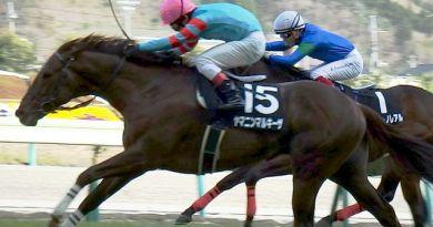 福島メインのレース・ヤマニンマルキーザ