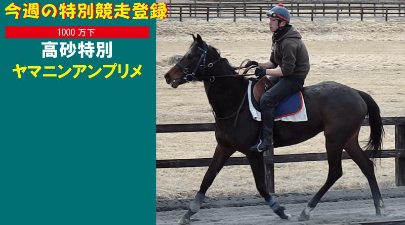 今週の特別競走登録・ヤマニンアンプリメ