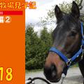 なおやの見学記2018-4