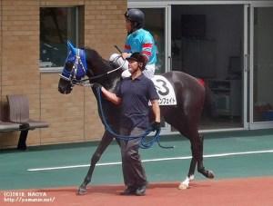 ヤマニンフェイトと岩崎騎手