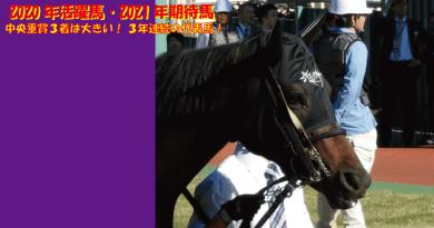 2020年の活躍馬・2021年の期待馬