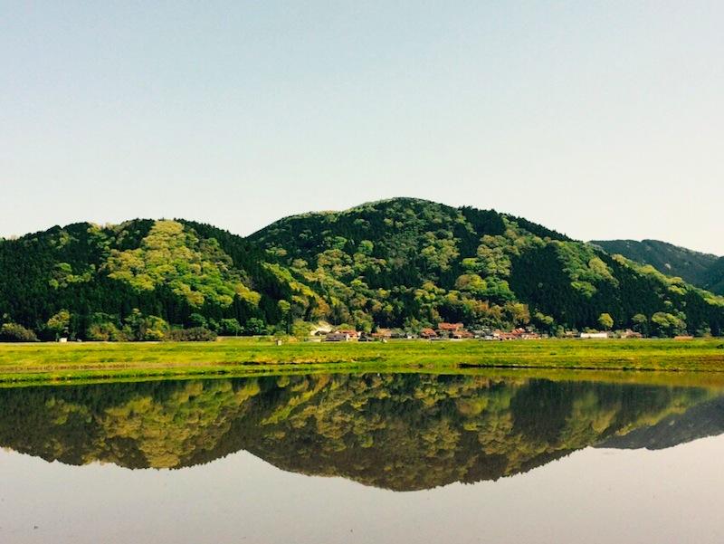 鏡と化した田んぼの景色が美しい(山口市阿東)