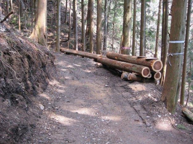 森林作業道作設#12( 道幅2.5m )| やまさ育林