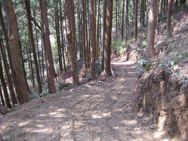 森林作業道作設#21( 道幅2.5m )| やまさ育林