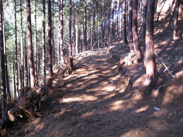 森林作業道作設#5( 道幅2.5m )| やまさ育林