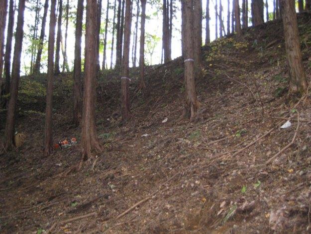 森林作業道作設#12( 道幅2.5m )施業前 | やまさ育林