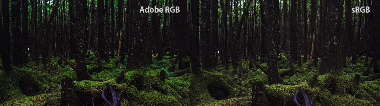 AdobeRGBのグリーンの表現