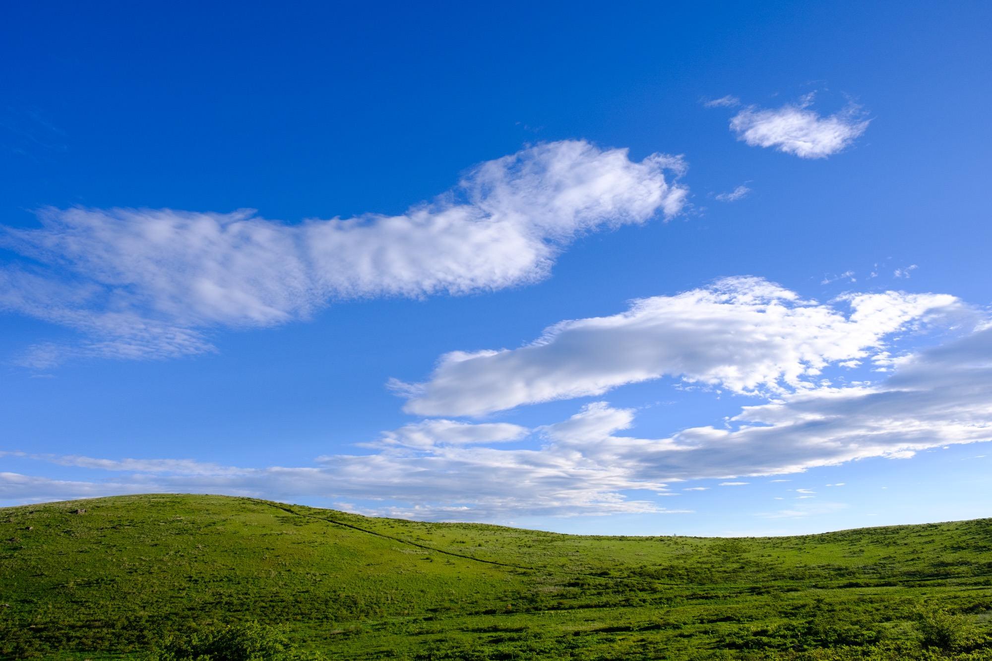 高原の丸山
