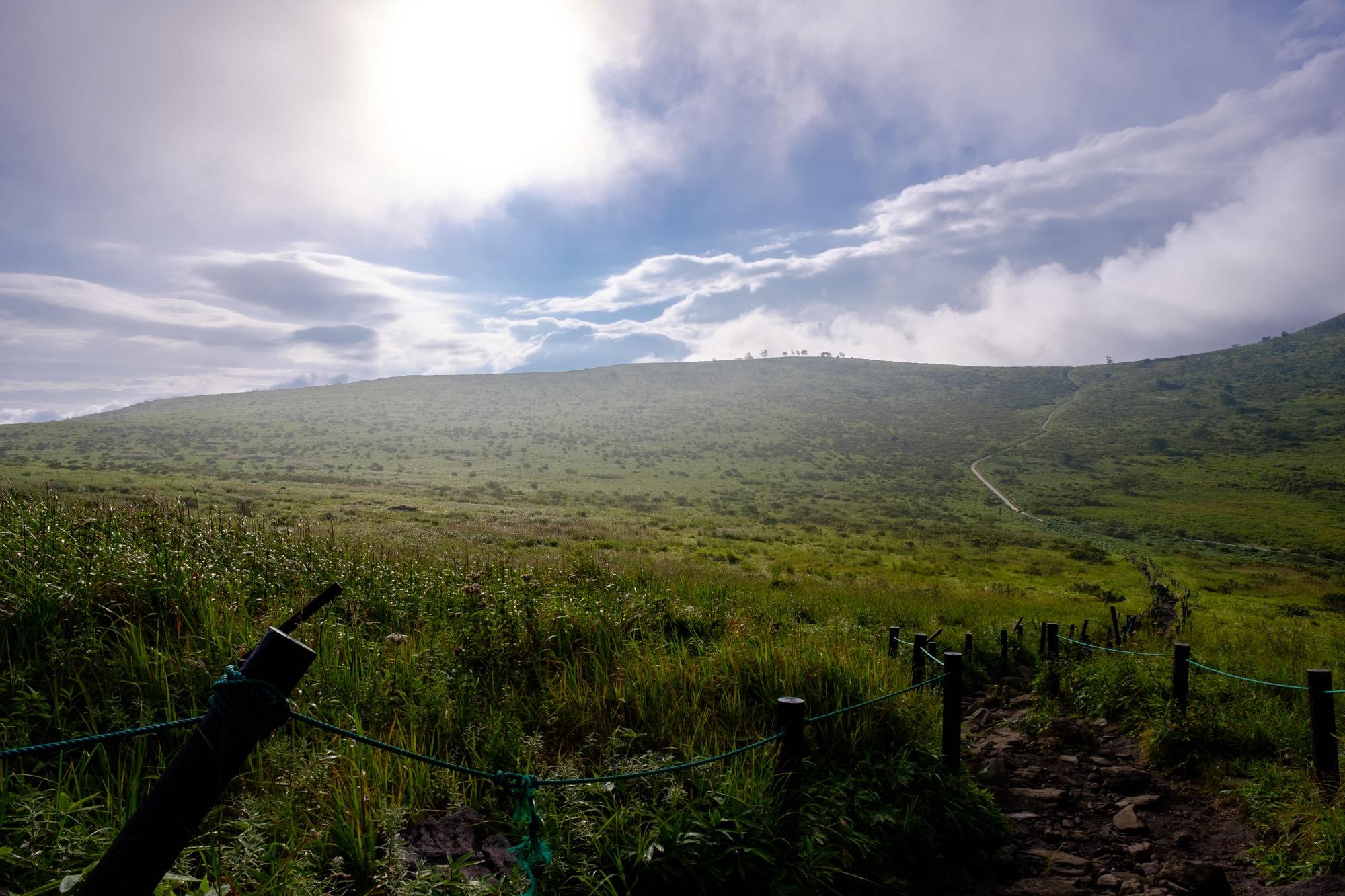 霧ヶ峰の木道