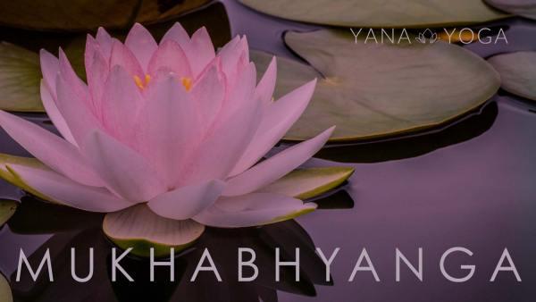 Mukhabhyanga Massage Yana-Yoga.de