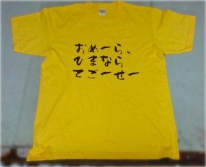 岡山弁Tシャツ(てごーせー)