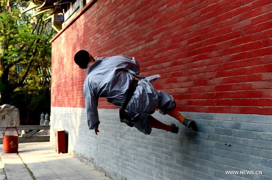 Application of traditional shaolin kungfu 26