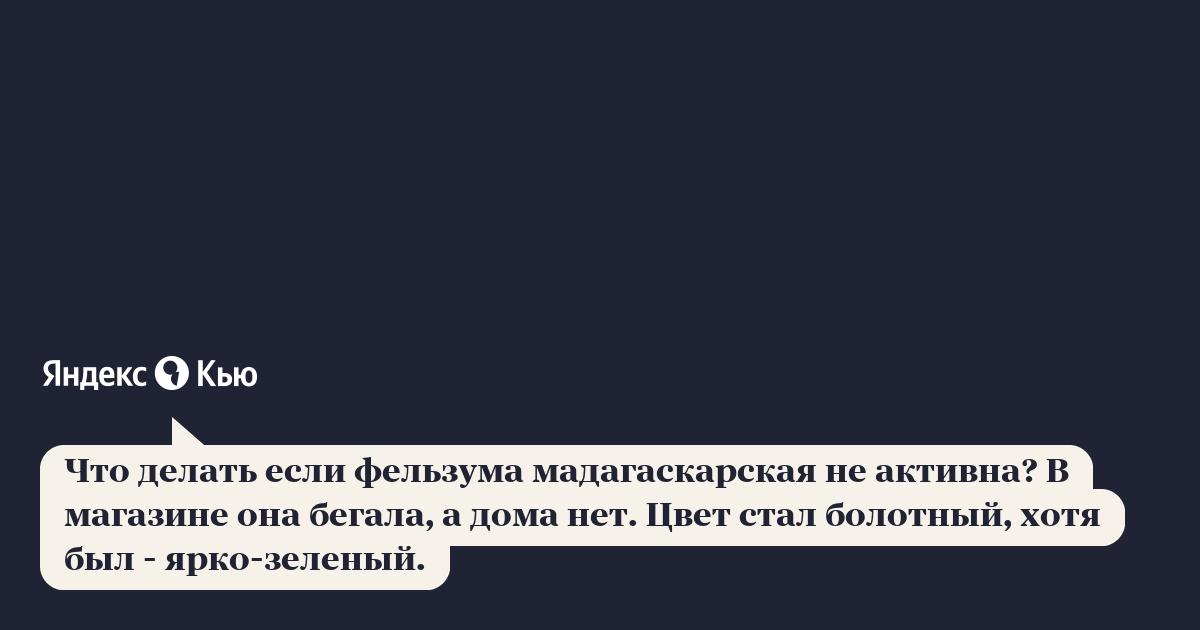 «Что делать если фельзума мадагаскарская не активна? В ...