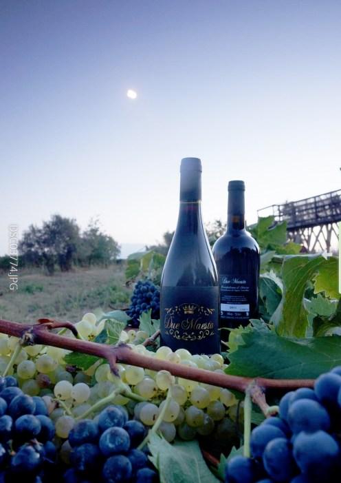 Due Maestà wines